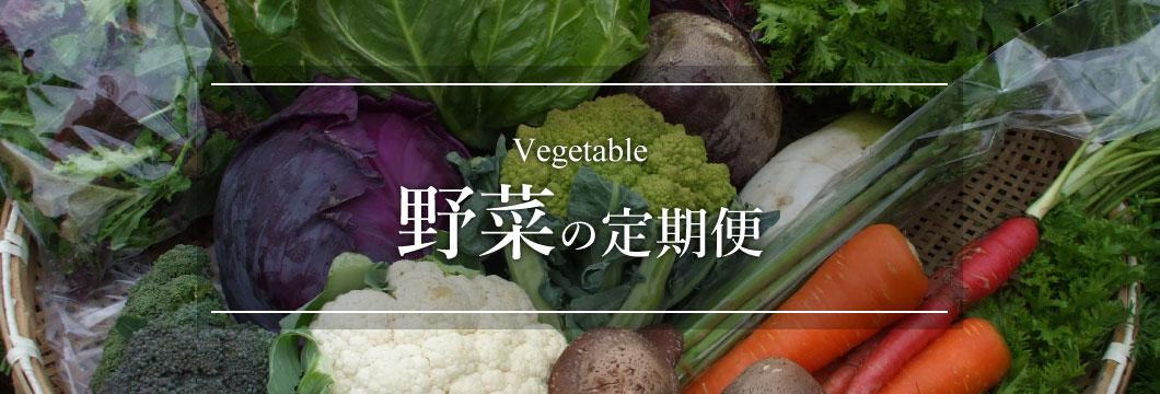 定期便特集 野菜の定期便